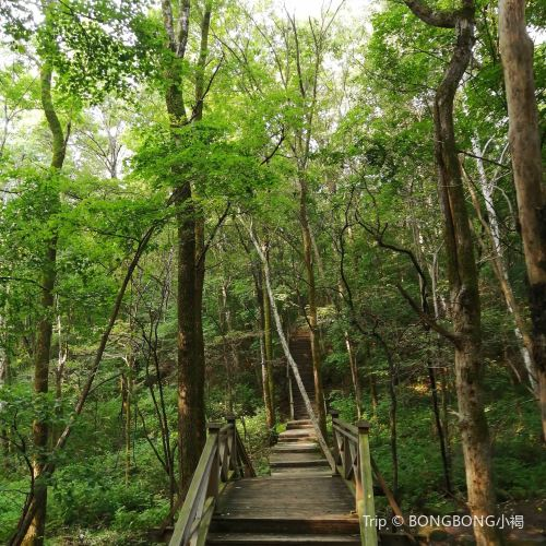 Huazi Mountain Forest Park