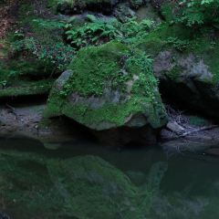 Cedar Falls用戶圖片