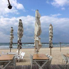 Bograshov Beach User Photo