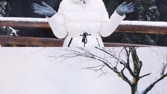 冬天就要去玩雪呀,七里坪:1 有冰雪美景,能在冰雪里泡温泉~