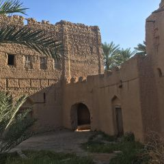 Birkat Al Mouz User Photo
