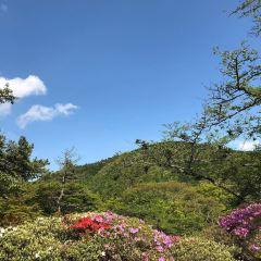 小湧谷蓬萊園用戶圖片