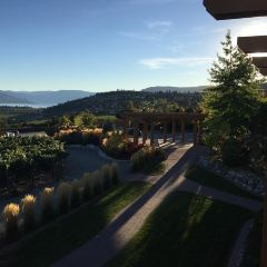 Quail's Gate Winery User Photo