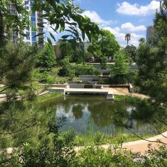 Bayou Park User Photo