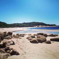 Cape Woolamai User Photo