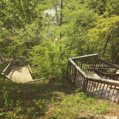 Lion's Valley Park User Photo