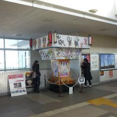 와시노미야 신사 여행 사진