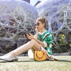 Amazon Spheres User Photo