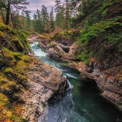 Little Qualicum Falls Provincial Park User Photo