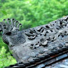 Lianhuatai User Photo