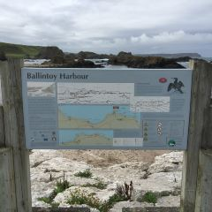 Ballintoy Harbour User Photo