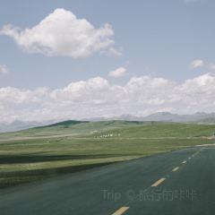 熱爾大草原用戶圖片