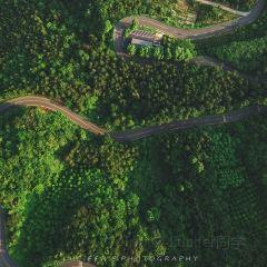 金華山用戶圖片