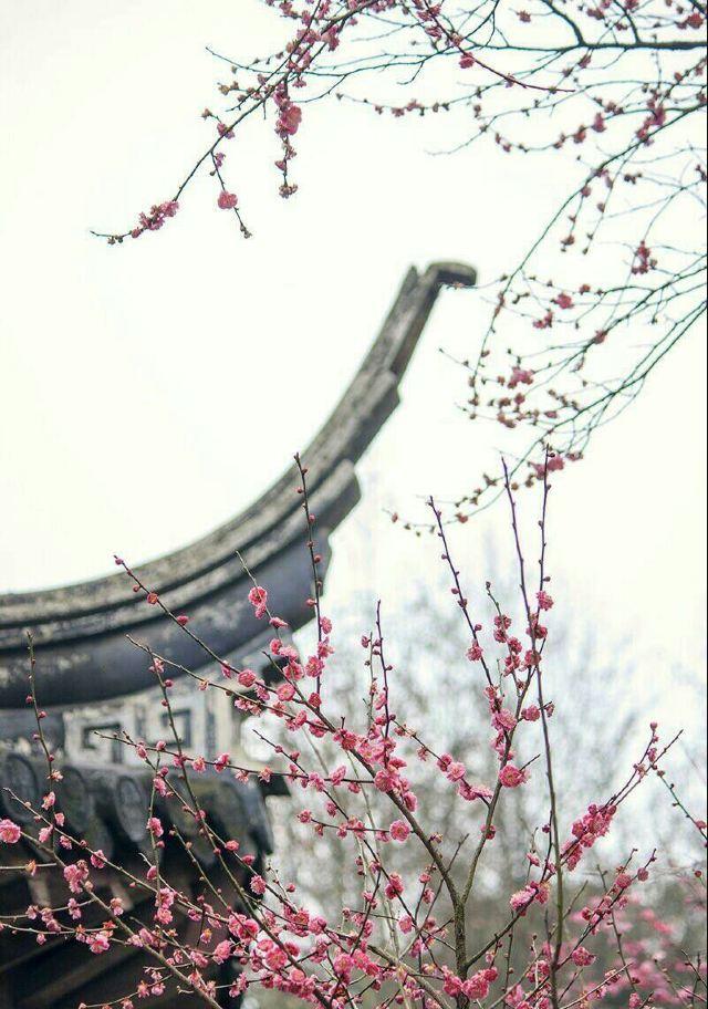 Meigang Park