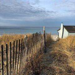 舊銀海灘用戶圖片