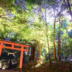霧島岑神社のユーザー投稿写真