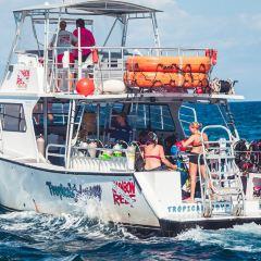 John Pennekamp Coral Reef State Park User Photo