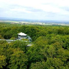 Nationalpark Hainich User Photo