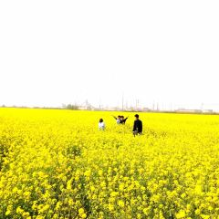 Beimenghouzhuang Ecological Park User Photo