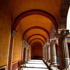 地區博物館用戶圖片
