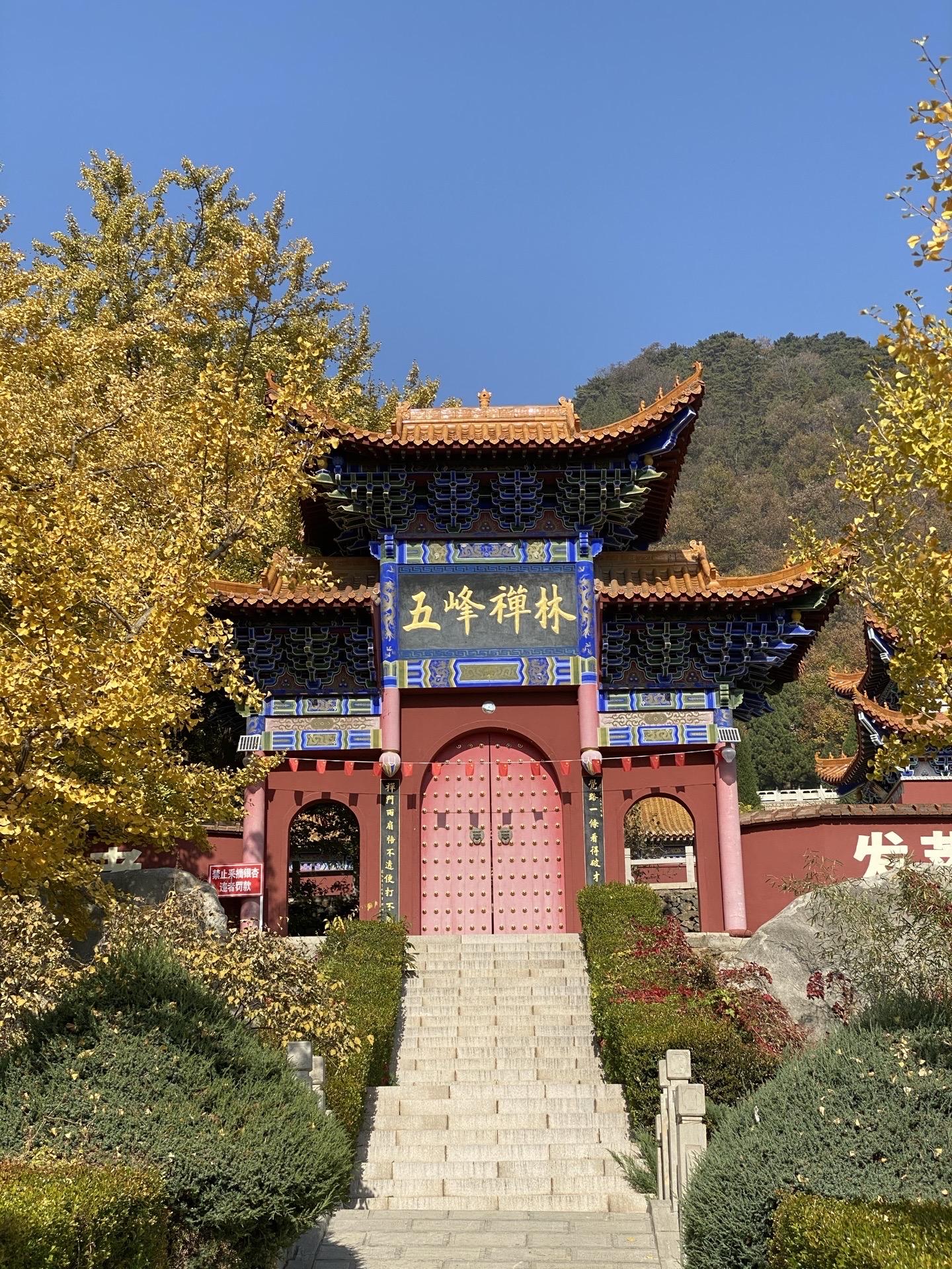 Ancient Ginkgo Garden of Chanlin Temple