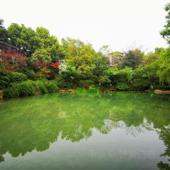 仙人谷景區用戶圖片