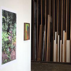 Monte Clark Gallery User Photo
