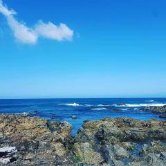 Island Bay User Photo