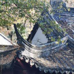 定林山莊用戶圖片