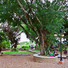 Plaza Cuartel User Photo