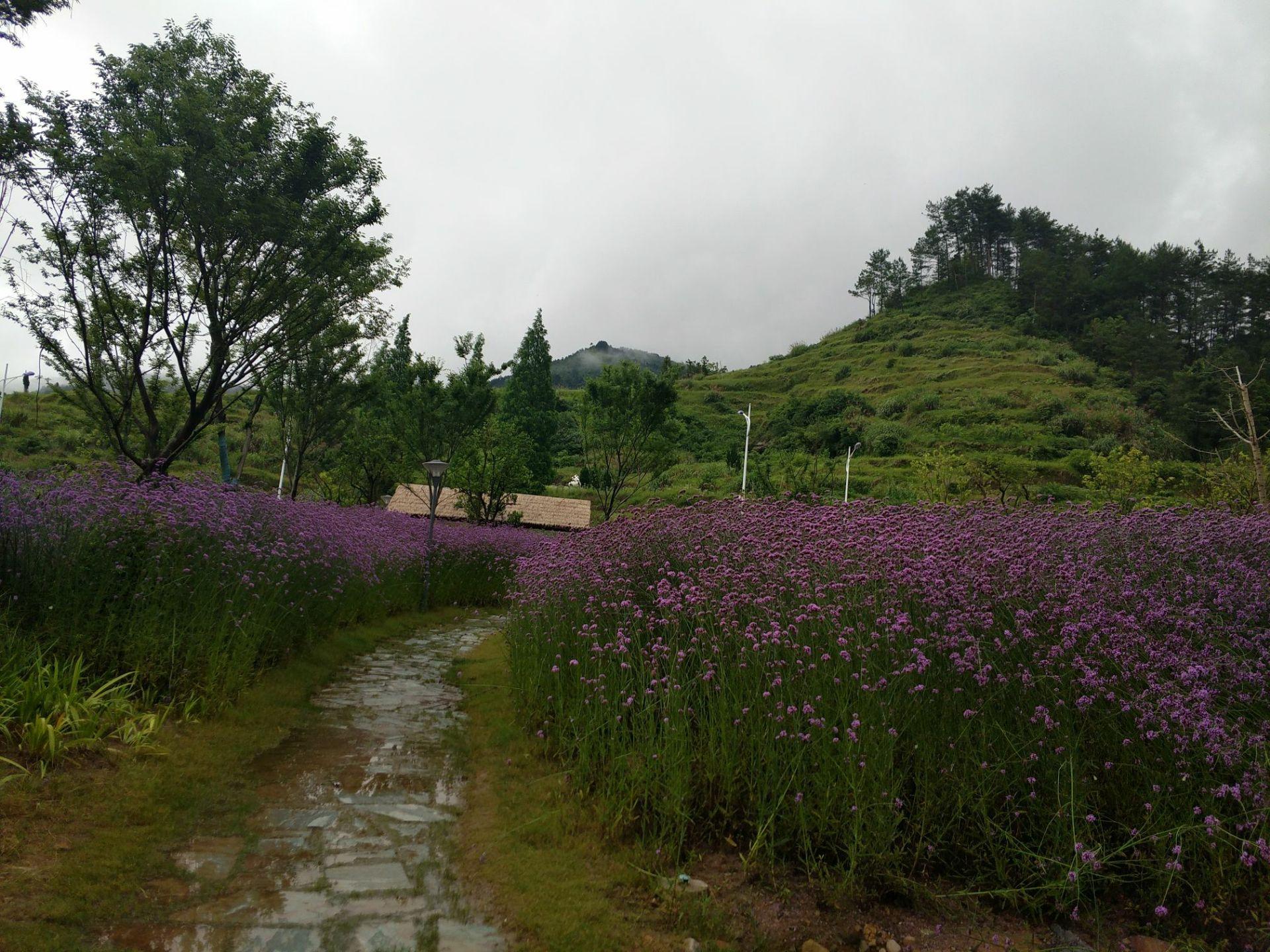 Huangtanxian Guoyuan Ecology Farm