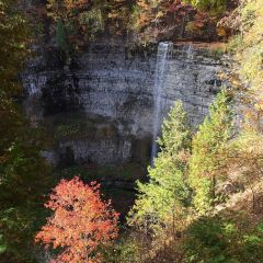 Webster's Falls Conservation Area User Photo