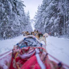 Saariselka User Photo