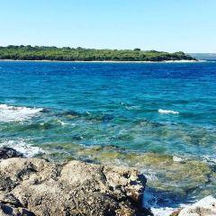 Brijuni Islands用戶圖片