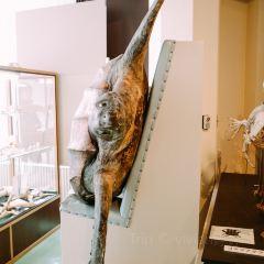 知床博物館用戶圖片