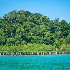 Shizi Island User Photo