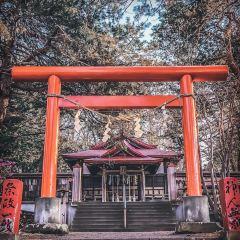 Yahiko Shrine User Photo