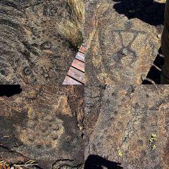 Pu'u Loa Petroglyphs 여행 사진