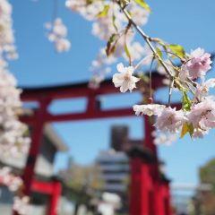 Uto Shrine User Photo