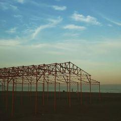 三浦海岸海水浴場張用戶圖片