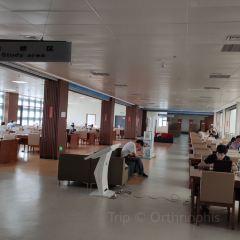 荊州市圖書館新館用戶圖片