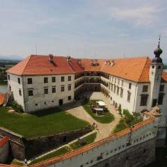 Ptuj Castle (Ptujski Grad) User Photo