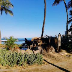 The Kapahulu Groin (Waikiki Wall) User Photo