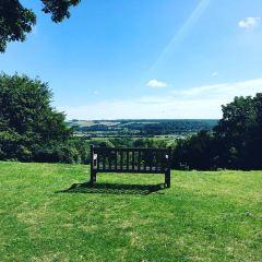 Arundel Castle & Gardens User Photo