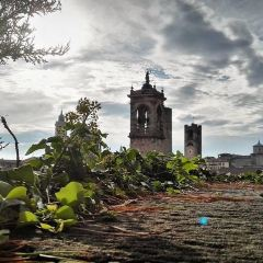 La Citta' Alta用戶圖片