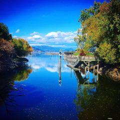 Salmon Arm Wharf User Photo