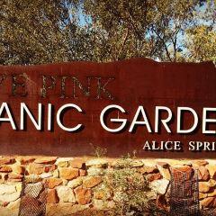 Olive Pink Botanic Garden User Photo