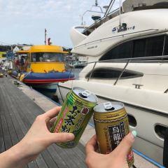 三崎港張用戶圖片