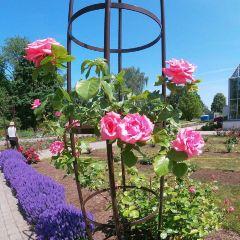 Kaunas Botanical Garden User Photo