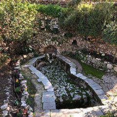 園の墓のユーザー投稿写真